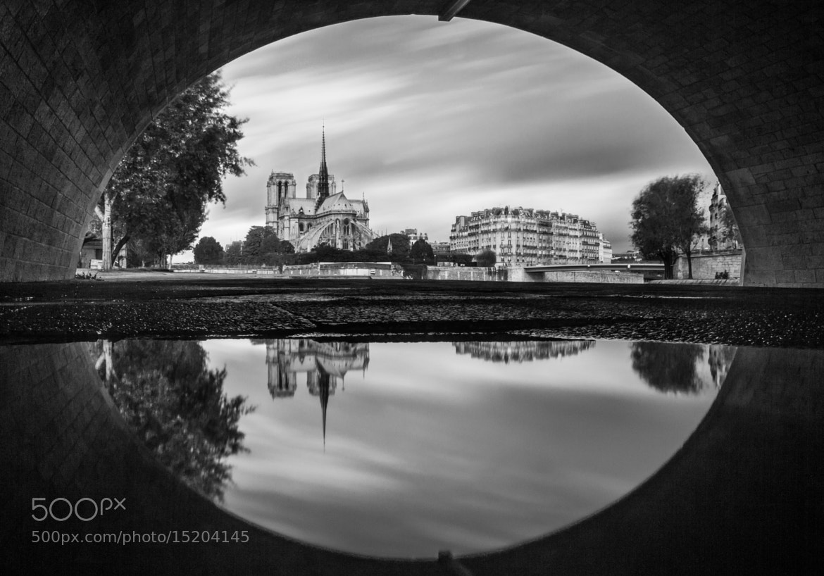 Photograph Notre Dame by Charly LATASTE on 500px