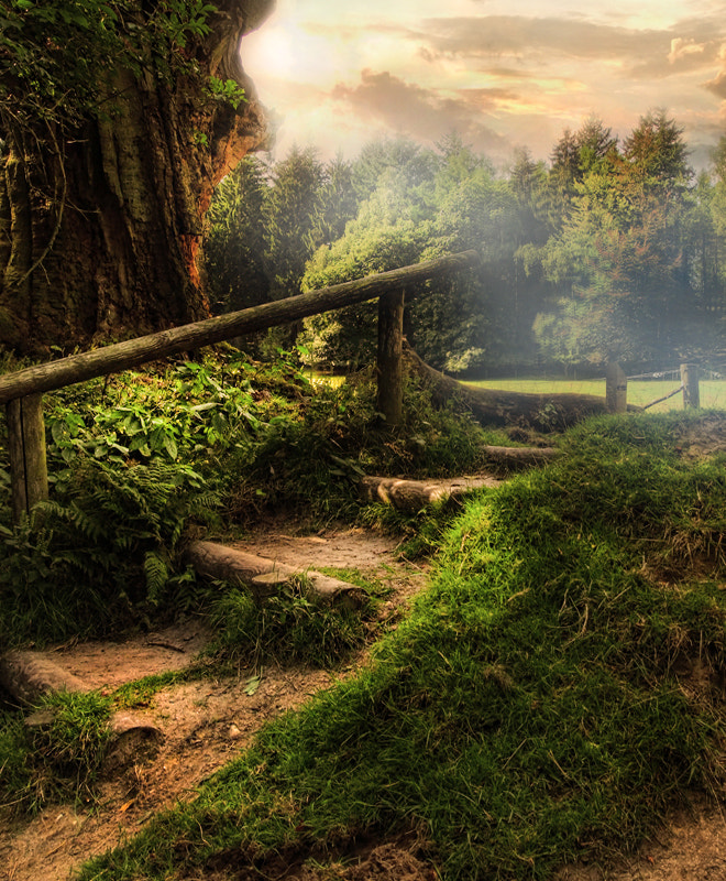 Photograph stairway to heaven! by Patrick Strik on 500px