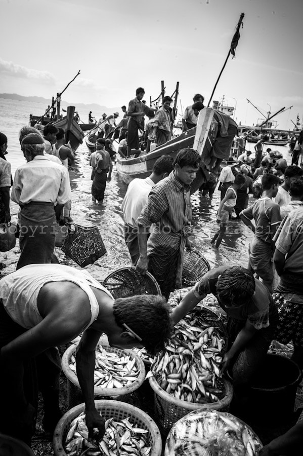 Photograph Fishermen - Sittwe, Myanmar by Eduardo de Francisco on 500px