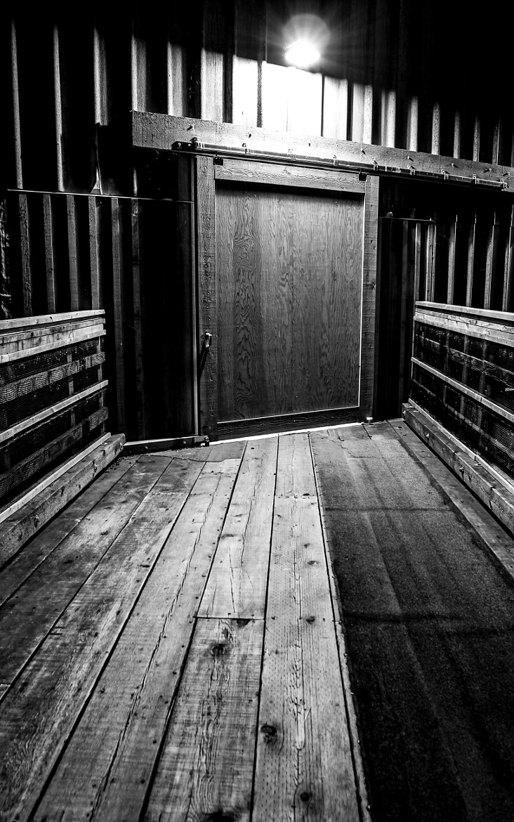 Photograph Obscure Doorway by Darcey Millar on 500px