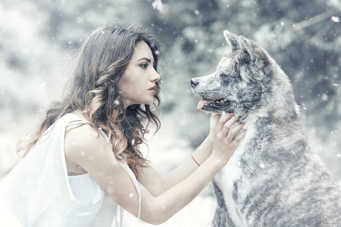 Cold Wolf by 500px on 500px