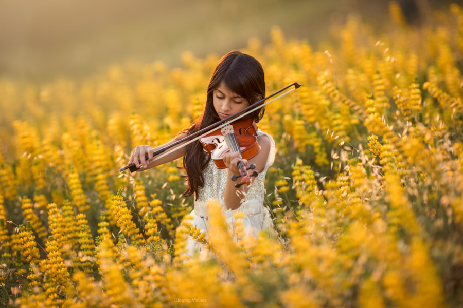 The Spring of Music 2 by Irfan Zaidi