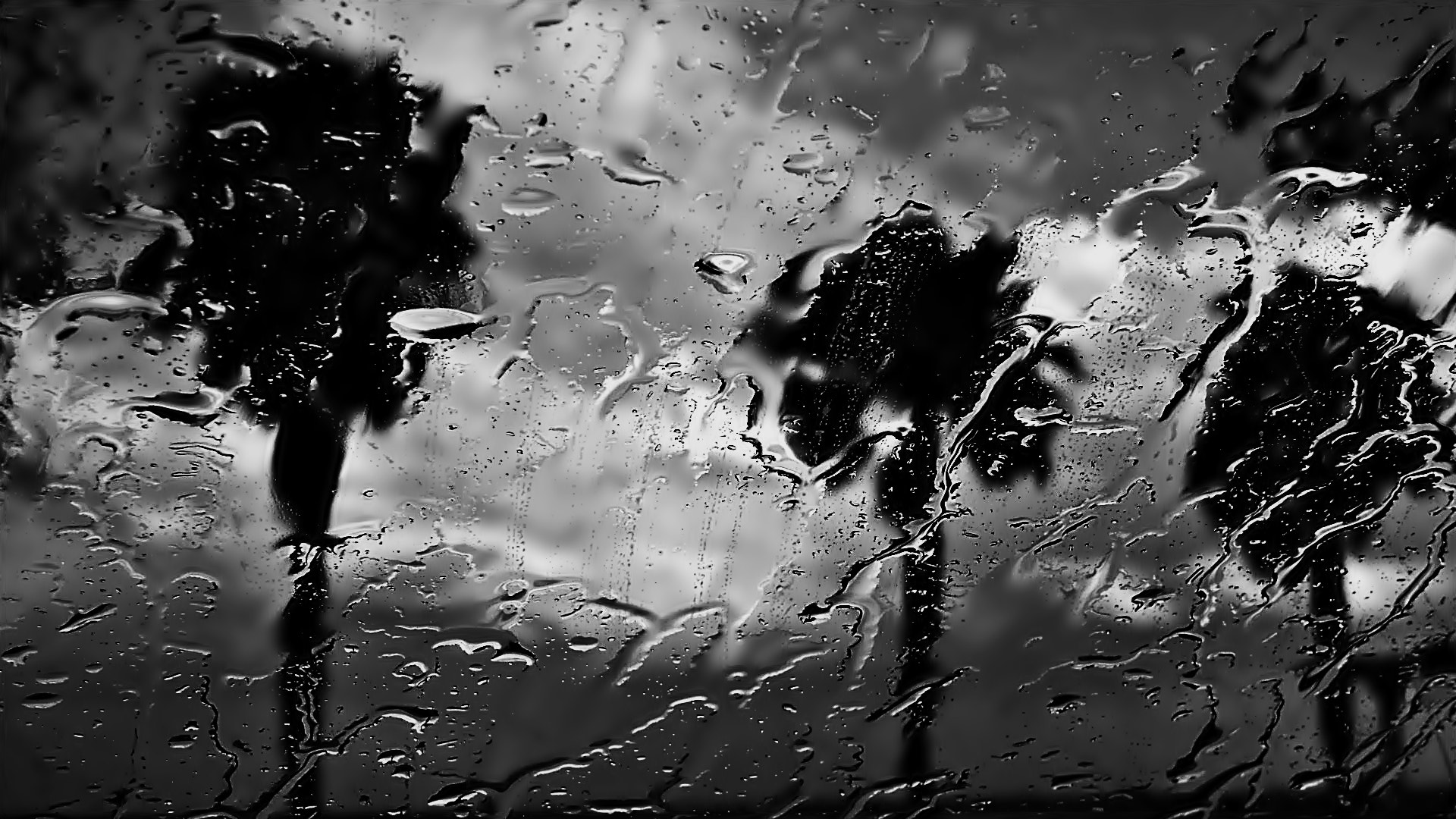 Photograph Can stop the rain from getting in by milena seita on 500px