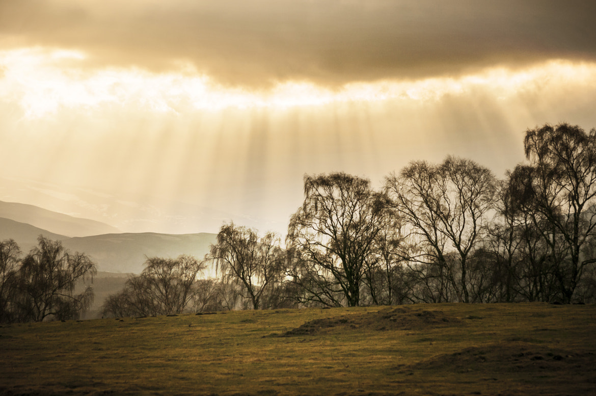Photograph Light rays by Robert Proudfoot on 500px