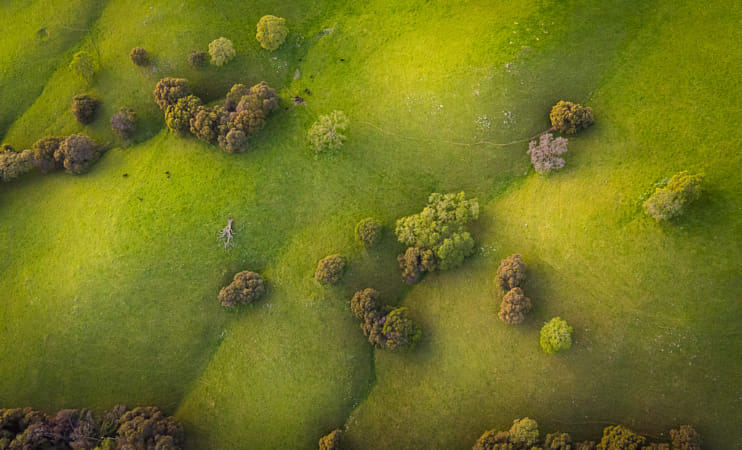 Little Green Foothills by The Stillery x Natta Summerky on 500px