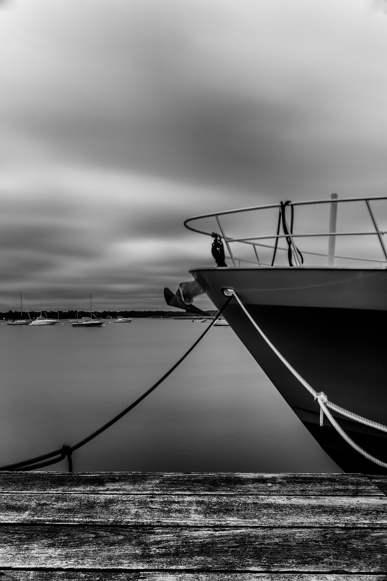 Photograph Bow by Stephanie Costa on 500px