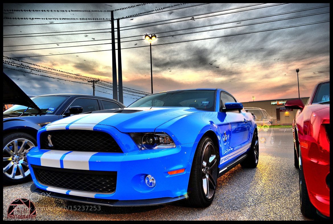 Photograph 2012 Shelby Gt 500 by Ryan Garza on 500px