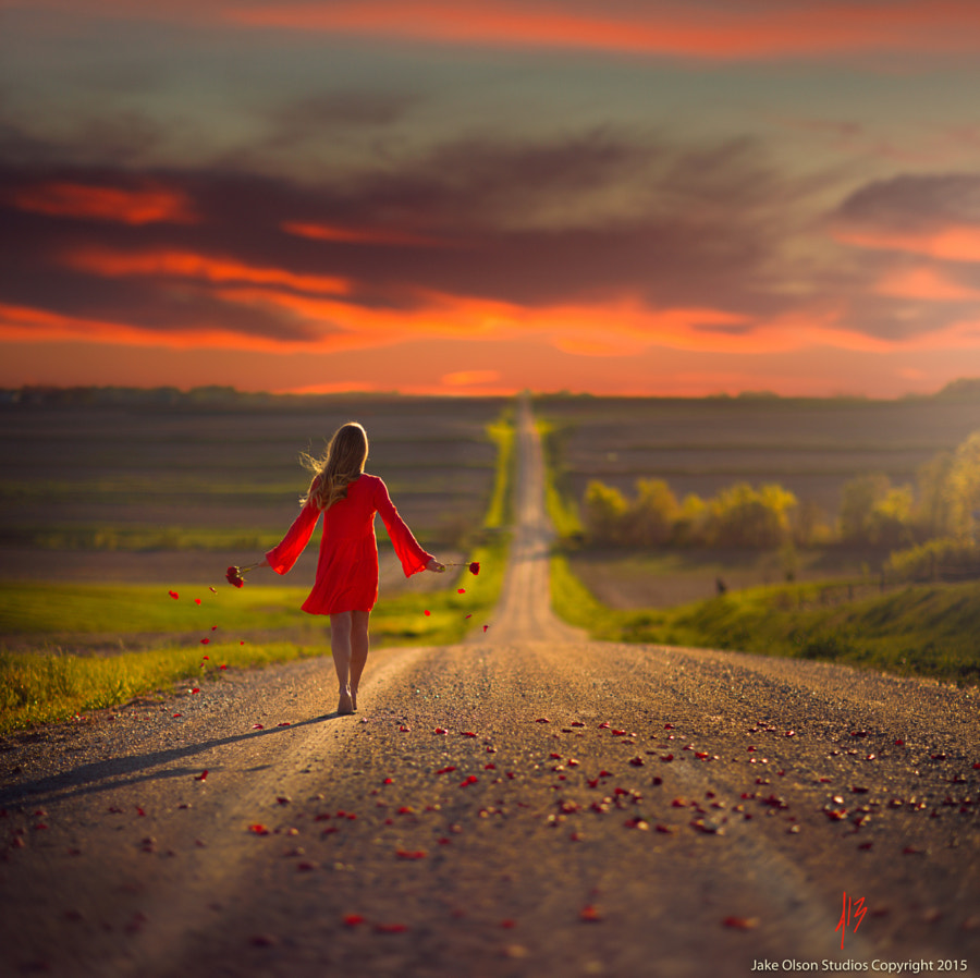 Roses Are Red by Jake Olson Studios