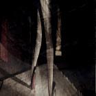 Règle d'or : laisser une image incomplète de soi...  Emil Cioran