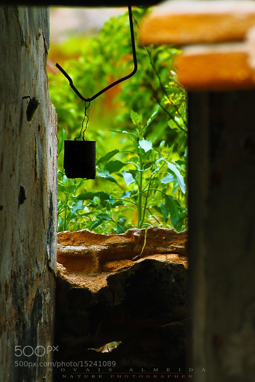 Photograph Abandonment by Novais Almeida on 500px
