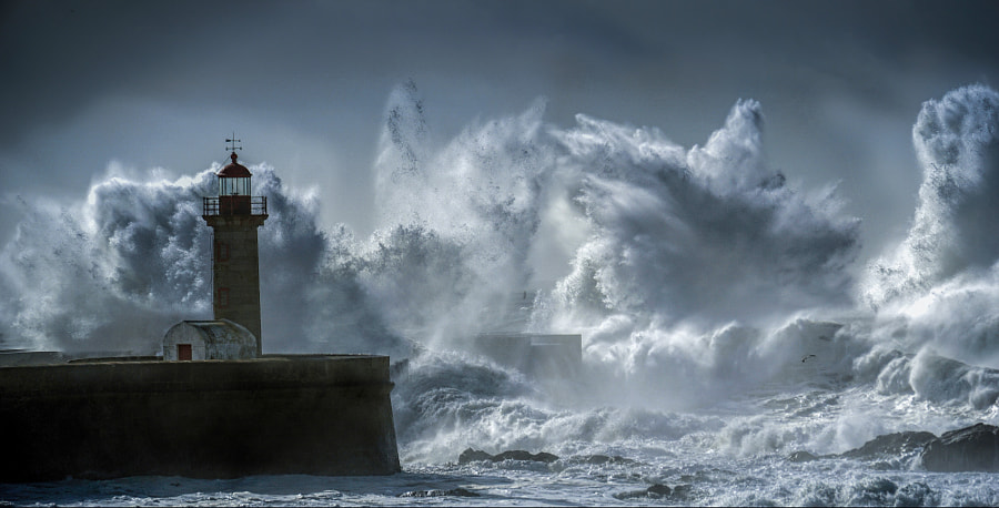 Worse things happen at sea by Eduardo Teixeira de Sousa on 500px.com