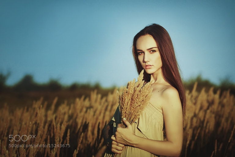 Photograph Spikelets by Ольга Гакуть on 500px