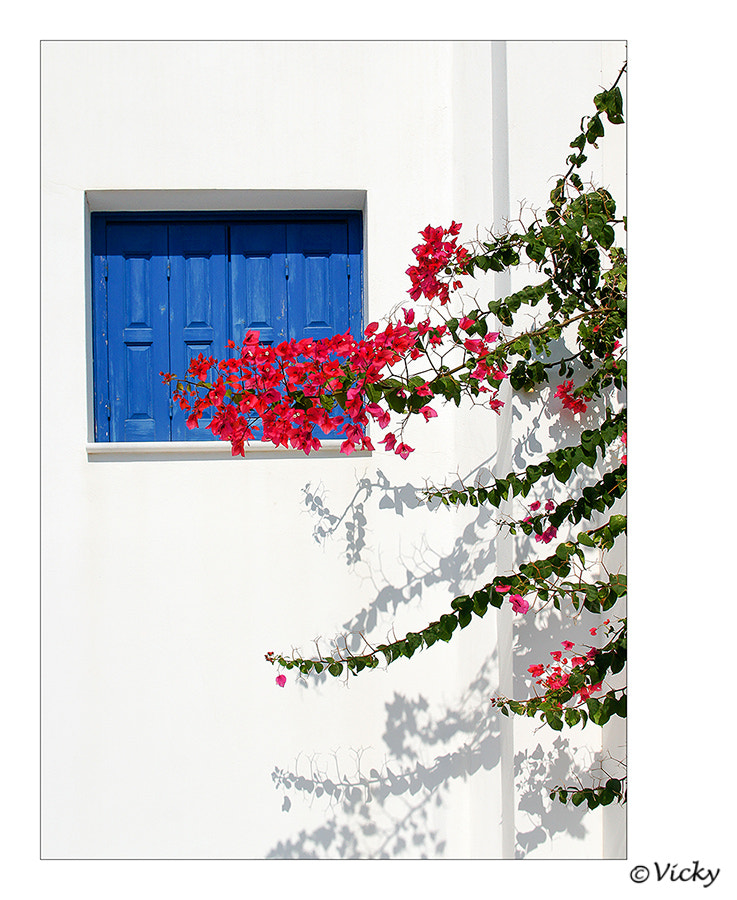 Photograph blue  window, Naxos by Vicky Dens on 500px