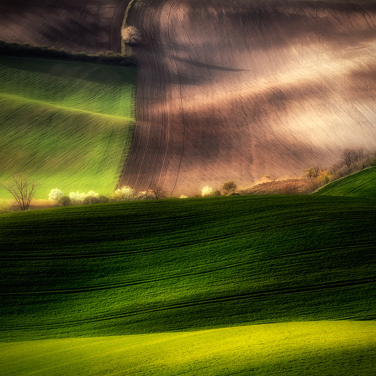 Photograph fields by Piotr Krol on 500px