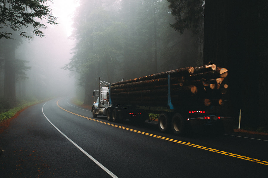 Redwood Hwy by Nick Carnera on 500px.com