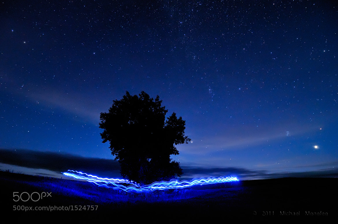 Photograph Blue Me Around A Tree by Michael Menefee on 500px