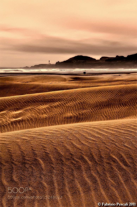 Photograph Agate Beach by Fabrizio Pescali on 500px