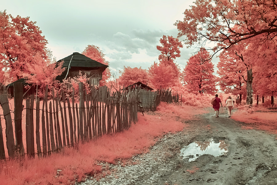 Countryside in infrared, the author - Costin Mugurel on 500px.com
