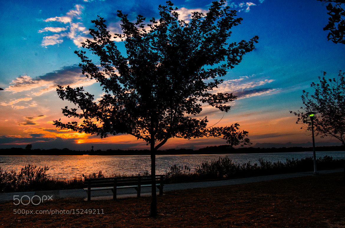 Photograph The park bench... by Ed  Logan on 500px