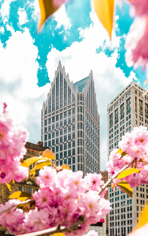 Spring pictures - Spring in Detroit by Hayden Scott on 500px.com