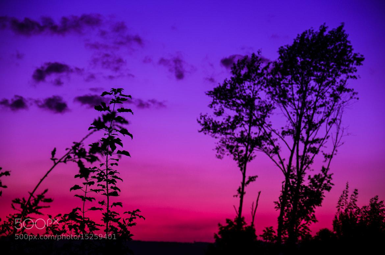 Photograph Sunrise in Schwerte by Leo G on 500px