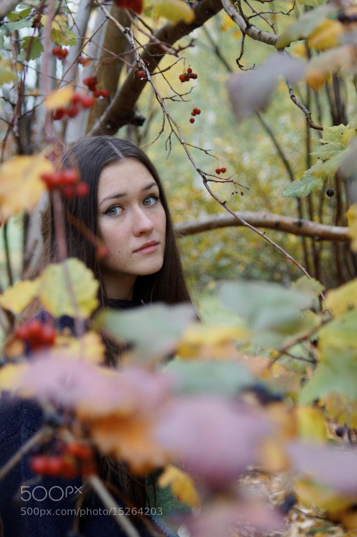 Photograph Untitled by Vladimir Kayl on 500px
