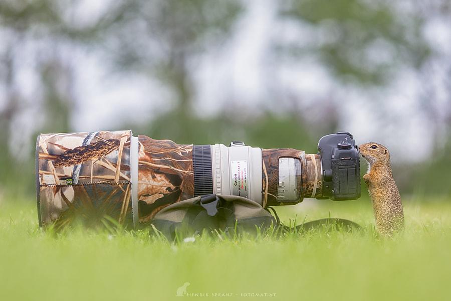 ~ Pro Photographer ~
