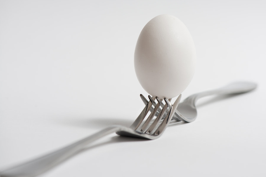 Forks holding an egg