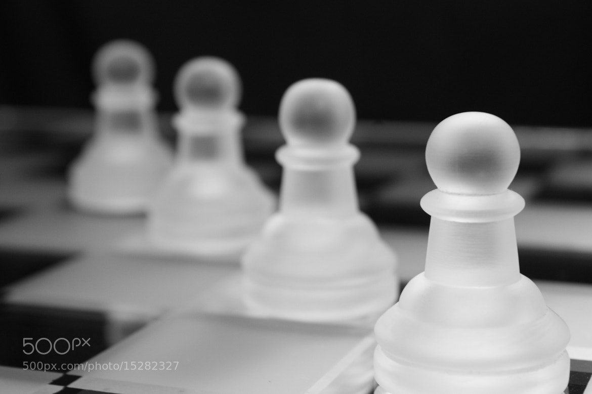 Photograph  Chess by moneef ebad on 500px