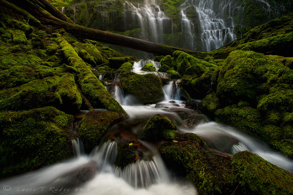 Photograph Proxy by Lance Rudge on 500px