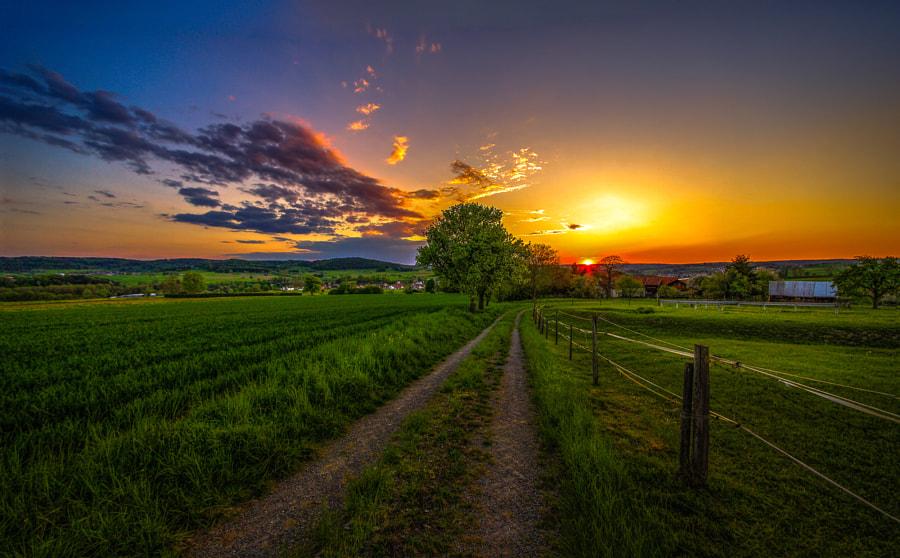*the right path* de Ralf Thomas sur500px.com