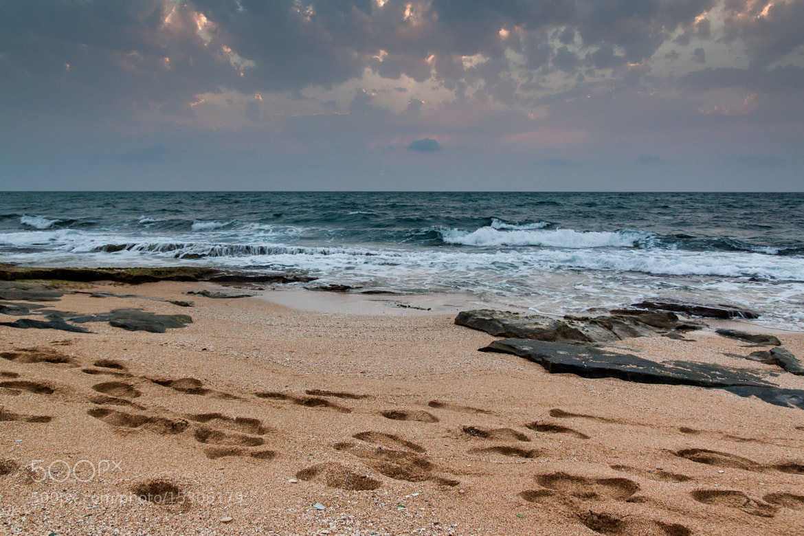Photograph Walking by the sea by Oren Grinshtain on 500px