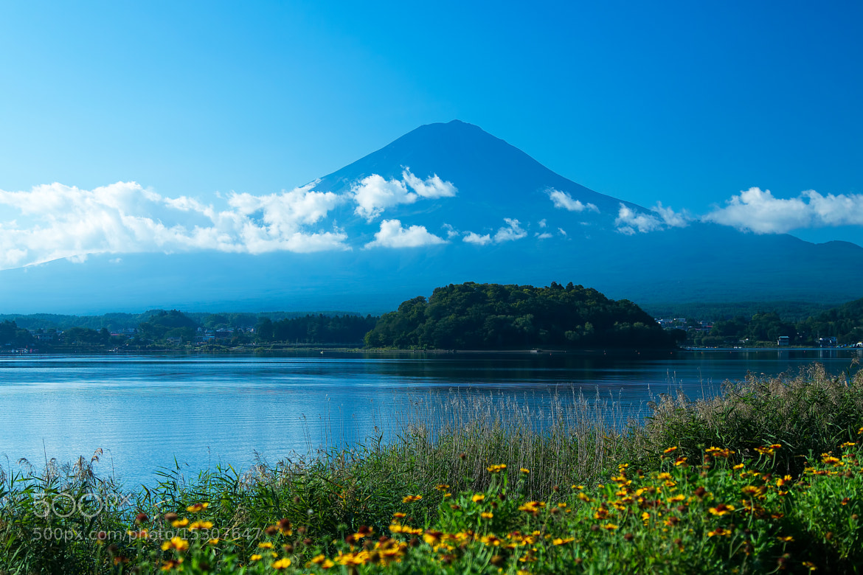 Photograph Mt.Fuji and lake Kawaguchiko by MIYAMOTO Y on 500px