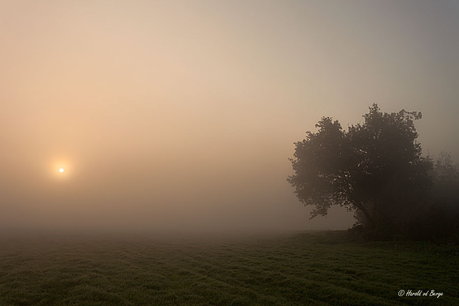 Photograph Fight the fog! by Harold van den Berge on 500px