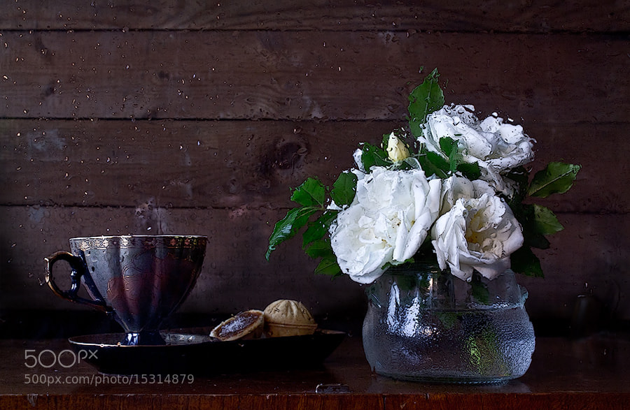 Photograph Tears of a tea rose by Viktoria Imanova on 500px