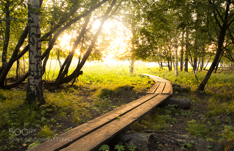 Photograph Sunrise by Iiro  Rautiainen on 500px