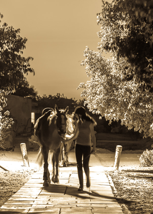 Photograph walking together by Nissim Bracha on 500px