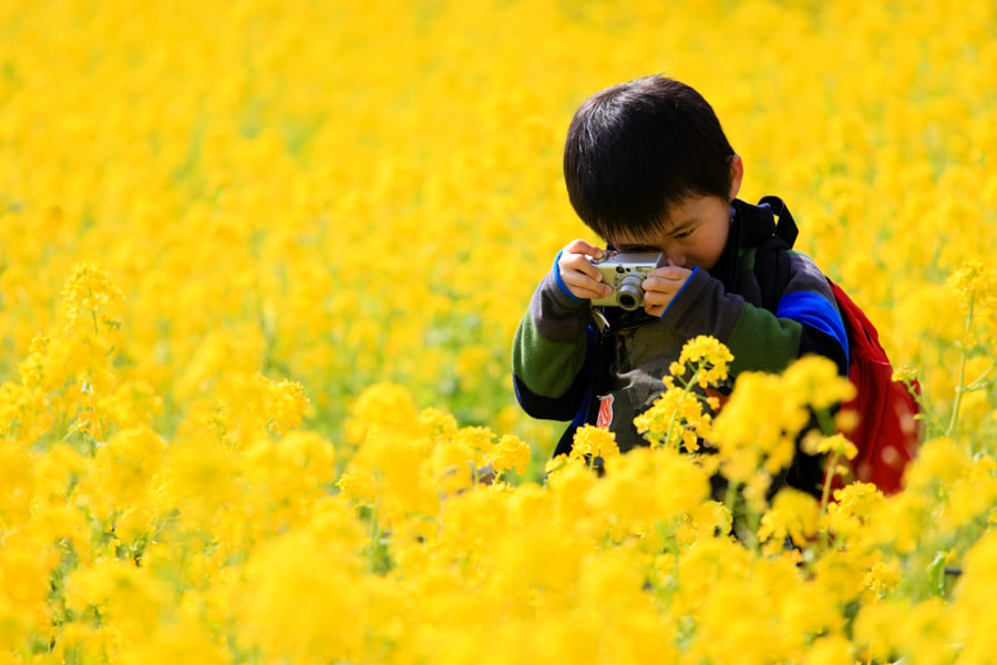 Yellow! by Summit 1000 on 500px.com