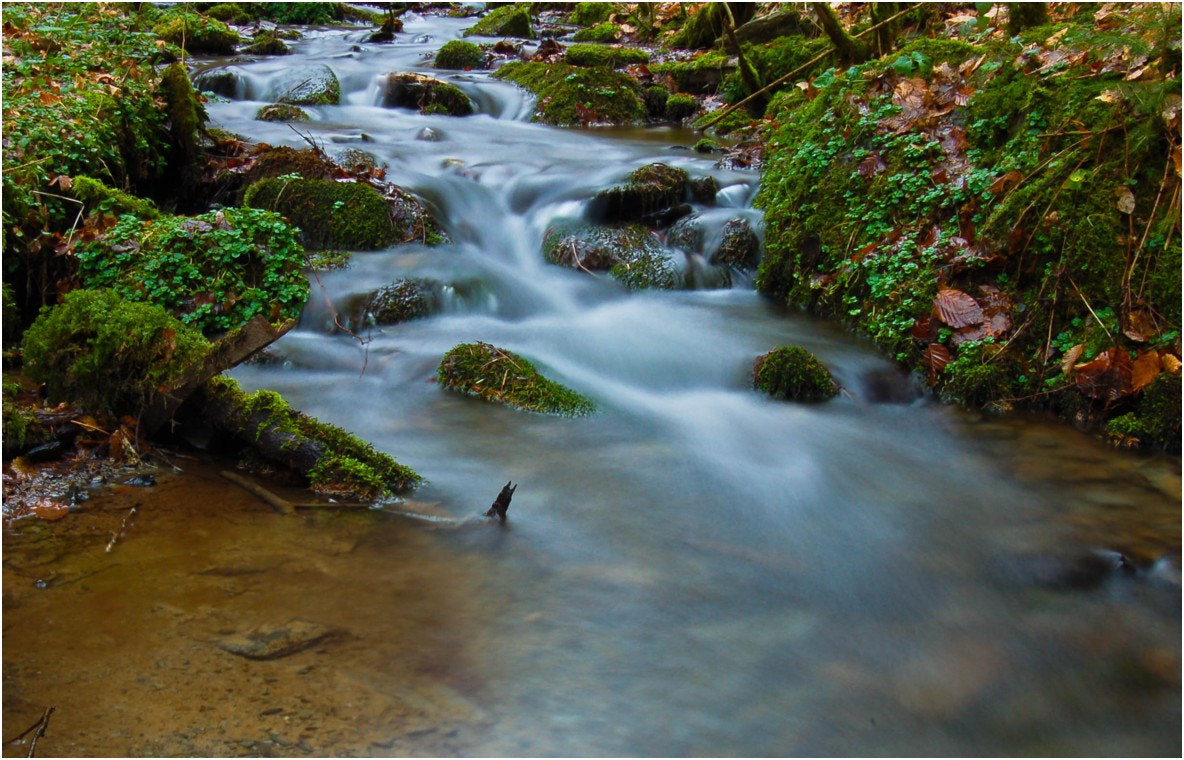 Photograph small river by Ulrich Fleischer on 500px