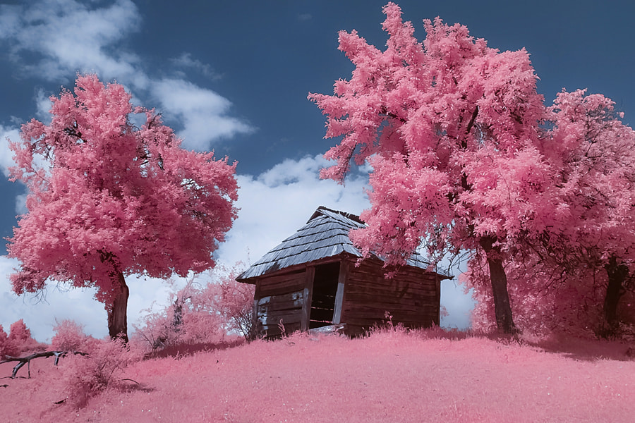 Abandoned mountain house (IR), the author - Costin Mugurel on 500px.com