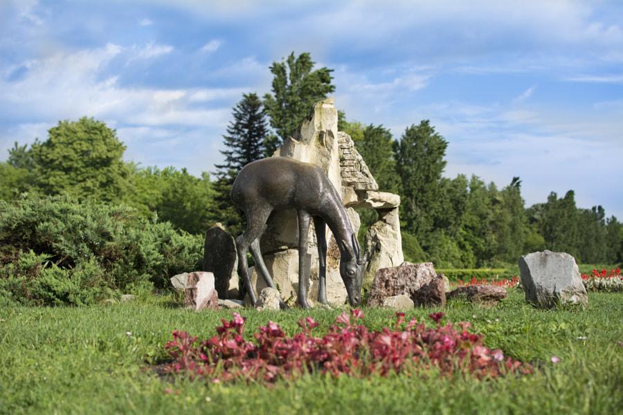 Iron Deer in the Park