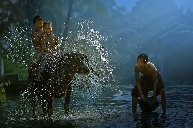 Photograph Buffalo Splash by Enjo Mathew on 500px