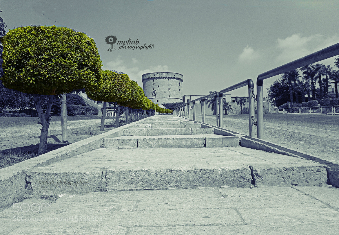 Photograph PG*(1002E012) by Mohab mamdouh on 500px