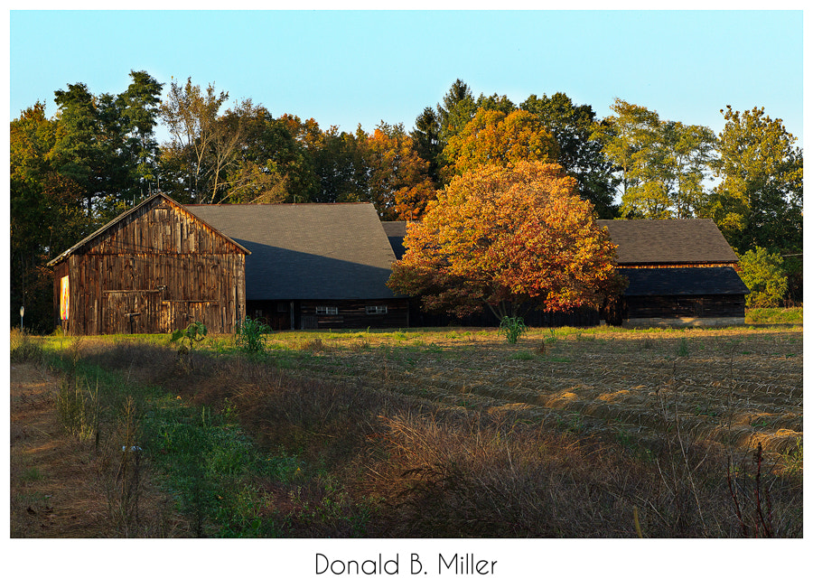 Photograph Fall In New England by Donald Miller on 500px