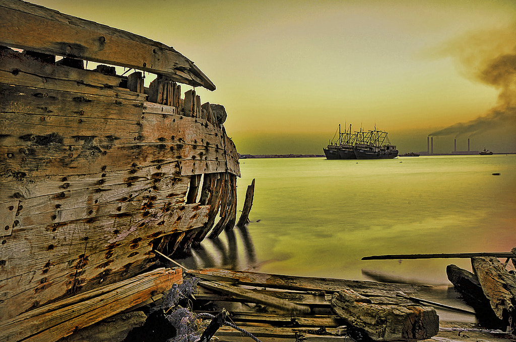 Photograph Golden Sea by mishal al-mansour on 500px