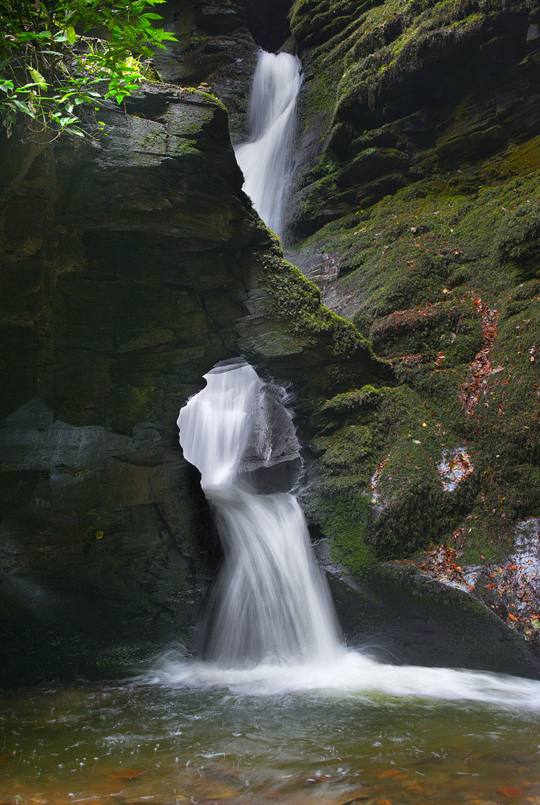 Photograph St Nectarn`s Glen Waterfall. by Dave Kitson on 500px