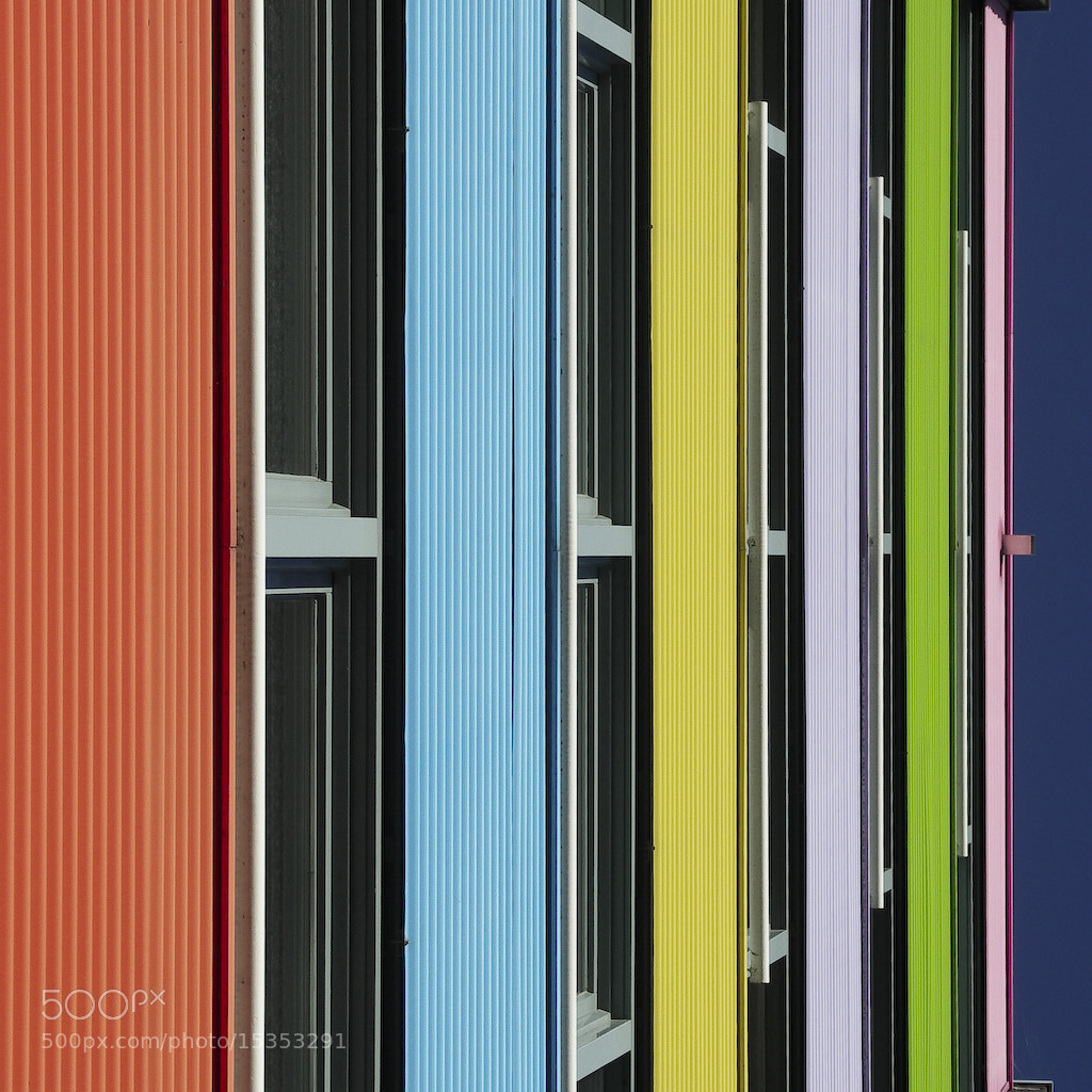 Photograph Archistripes by Maciej Dobrzynski on 500px