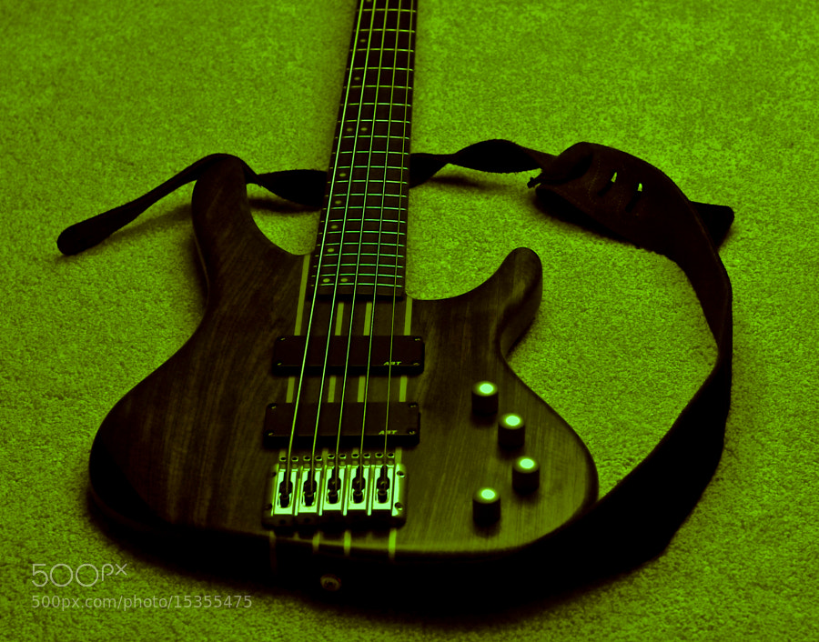 Photograph Bass on Rug by Matthias Locker on 500px