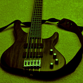 Bass on Rug by Matthias Locker (matthiaslocker)) on 500px.com