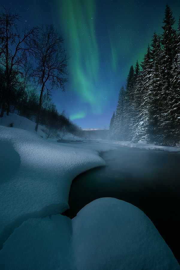 Delicate Night by Arild Heitmann on 500px.com